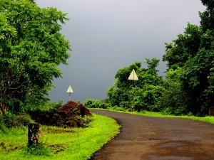 Destinations In Kerala To Experience The Monsoon