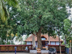 Payammal Shatrughna Temple In Thrissur History Timings Attractions And How To Reach