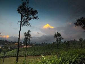 Two More Tourist Attractions Are Getting Ready In Valparai Hill Station