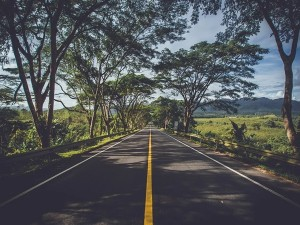 Delhi To Mumbai Greenfield Highway Is Expected To Be Completed By First Quarter Of