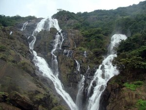 Dudhsagar Waterfalls Soon Open For Trekkers