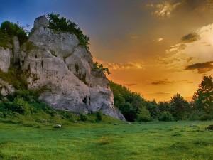Top Places To Visit In Sakleshpur A Natural Gateway In Karnataka