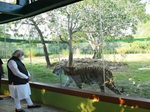 Sardar Patel Zoological Park Jungle Safari In Kevadiya Gujarat Attractions And Specialties