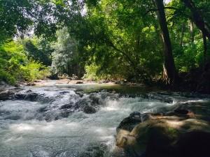 Njandukuzhi Falls In Kurunjeri Bheemanady Kasaragod Attractions And Specialities