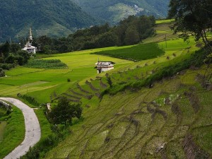 Unknown And Interesting Facts About Ziro Valley The Mysterious Place In Arunachal Pradesh