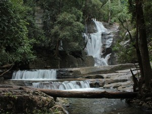 Vazhvanthol Waterfalls In Thiruvananthapuram Opened For Visitors Attractions And Specialties
