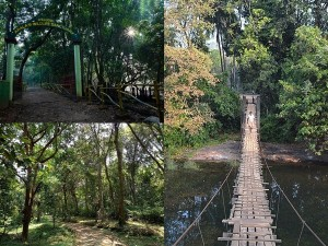 Kannur Aralam Wildlife Sanctuary Eco Tourism Packages