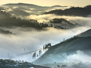 Munnar Witnesses Sub Zero Temparature Don T Miss The Best Views And Experiences