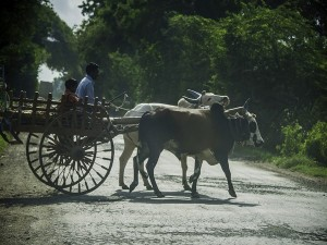 Mahabubabad The Haunted Village In Telangana Attractions And Specialties