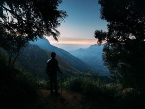 From Echo Point To Top Station Places To Visit In Munnar In One Day