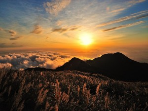 Mandalpatti Hills Trekking In Madikeri Attractions Specialties Timings And How To Reach