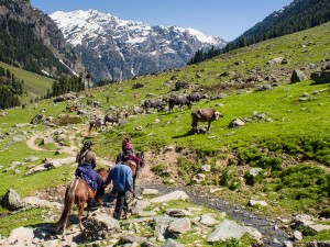 Chatpal In Jammu And Kashmir History Attractions Specialties And How To Reach