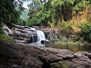 Nakkayam Thommankuthu Trek In Idukki Attractions And Specialties