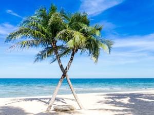 Tarkarli To Manori Beach Best Beaches In Maharashtra For Solo Travel