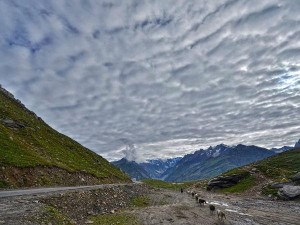 Hampta Pass To The Manali Gompa Best Places To Visit In Manali Anytime