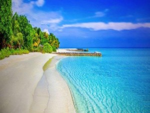 Interesting And Unknown Facts About Lakshadweep The Land Of Corals And Natural Beauty