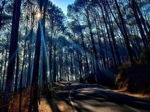 Hamirpur In Himachal Pradesh Attractions Specialties Places To Visit And How To Reach