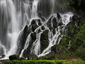 From Thoovanam Falls To Cheeyappara Waterfalls In Idukki Are In Full Flow In Monsoon And Ready To