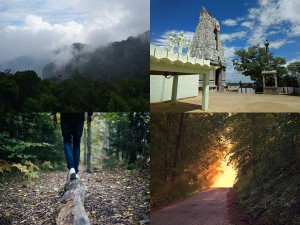 Pachaimalai Hills In Tamil Nadu Attractions Specialties And How To Reach
