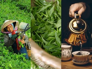 International Tea Day 2021 From Munnar To Yunnan Province Tea Tourism Destinations Around The World