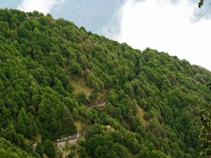 Kakrighat In Uttarakhand Attractions Specialties And Things To Do