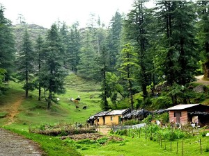 George Everest House In Mussoorie Attractions And Specialties