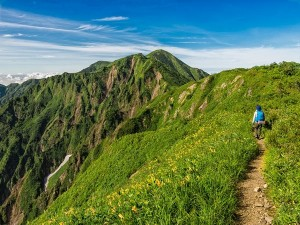 From Talle Valley To Chembra Peak Best Forest Trekking Destinations In India