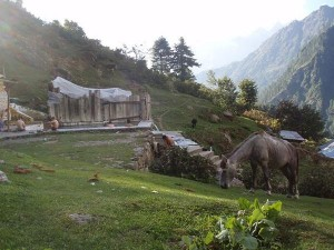 From Naggar Castle To Kheer Ganga Must Visit Places In And Around Kullu