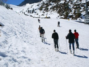 From Tamil Nadu To Kashmir Latest Travel Rules And Regulations In Different States Of India