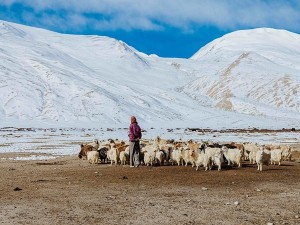 Inner Line Permit Is Not Mandatory For Domestic Travellers In Ladakh