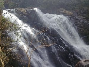 Meenmutty Falls In Wayanad Opened After Two And Half Years Attractions And Timings