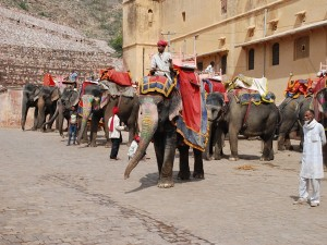Rajasthan Tourism Business Amendment Bill Those Misbehave To Tourist Will Face Strict Action