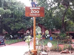 Wildlife Week 2021 Must Visit Zoos In Kerala For Experiencing Wilderness