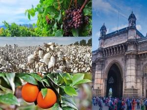 From Banana City To Wine Capital Nicknames Of Cities In Maharashtra
