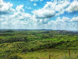 From Ranthambore To Mount Abu Top Winter Destinations In Rajasthan