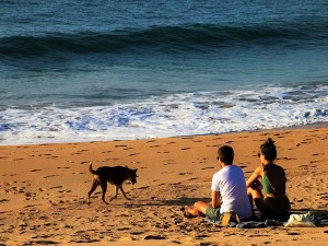 Sri Lanka Opens For Indian Travellers With Great Travel Deals