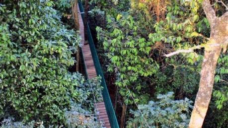 30 അടി ഉയരത്തില് ഇന്ത്യയിലെ ആദ്യത്തെ ക്യാനപി വാക്ക്!!