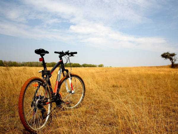 Best Cycling Routes Kerala