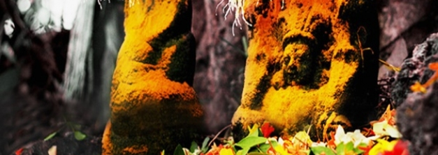 നാഗരാജാവ് വാഴുന്ന മണ്ണാറശ്ശാല മുതൽ വാസുകി പ്രത്യക്ഷപ്പെട്ട പാമ്പുംമേക്കാട്ട് വരെ...